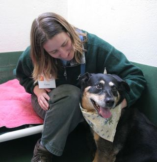 Kennel Attendant Pattie Beaven hangs out with Sydney