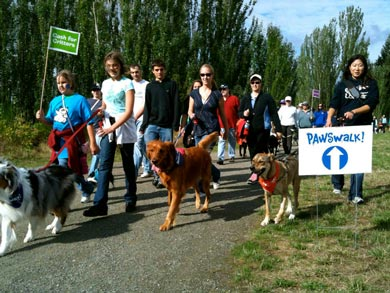 PAWSwalkers on their way through Magnuson Park