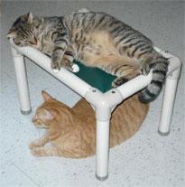Cat-bed-2[1]
