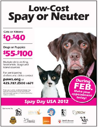 PAWS Spay Day 2012