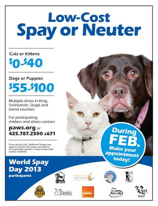 Low-Cost Spay Neuter - Spay Day 2013
