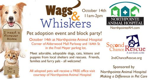 NAH-Adoption-Event