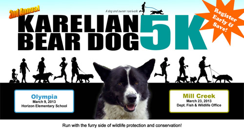 Karelian Bear Dog 5K