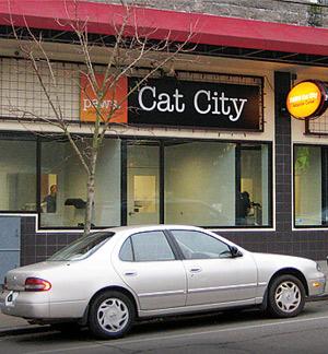 Cat-City