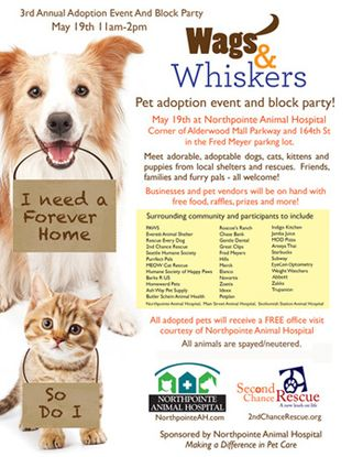 Wags & Whiskers Adoption Event 2013