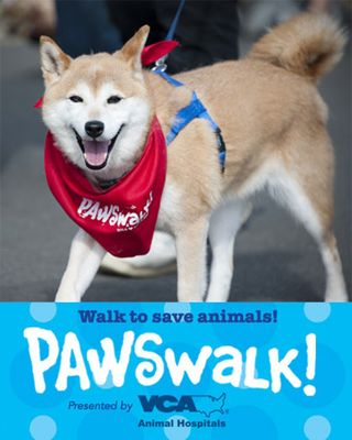PAWSwalk2013 Defender Sponsors