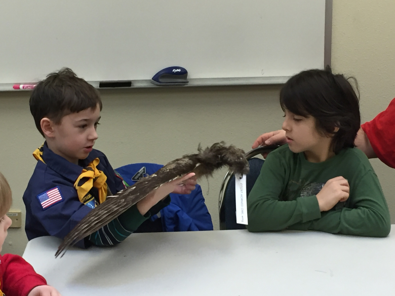 Boy scout with wing